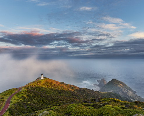 Cape Reinga is wher Souls depart
